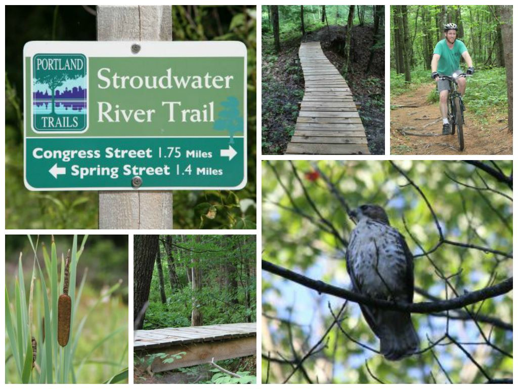 Stroudwater Trail Collage