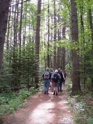 Group of Hikers Walking a Trail